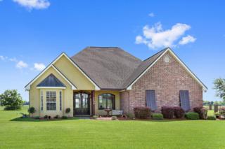 7406  Sugar Hill  , New Iberia, LA 70560 (MLS #15300038) :: Keaty Real Estate