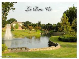 104 N Montauban Drive  , Lafayette, LA 70507 (MLS #15300805) :: Keaty Real Estate