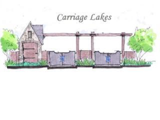 25  Carriage Lakes  , Broussard, LA 70518 (MLS #L14251812) :: Keaty Real Estate