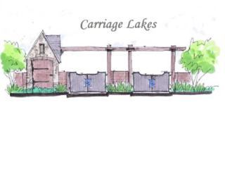1  Carriage Lakes  , Broussard, LA 70518 (MLS #L14251830) :: Keaty Real Estate