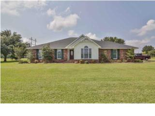 734  Walter  , Erath, LA 70533 (MLS #L14255521) :: Keaty Real Estate