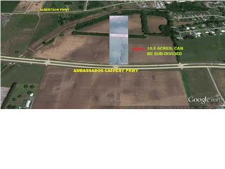 6900  Ambassador Caffery Pkwy  , Broussard, LA 70518 (MLS #L14256730) :: Keaty Real Estate