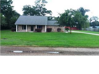 102  Michelle Ln  , New Iberia, LA 70563 (MLS #L14257935) :: Keaty Real Estate