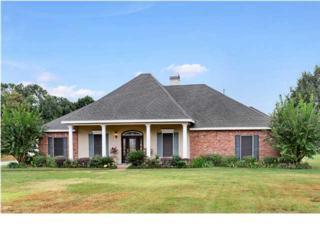 400 E Butcher Switch Rd  , Lafayette, LA 70507 (MLS #L14258367) :: Keaty Real Estate