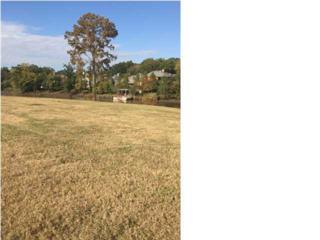 706/708  Elysian Fields Dr  , Lafayette, LA 70508 (MLS #L14258590) :: Keaty Real Estate