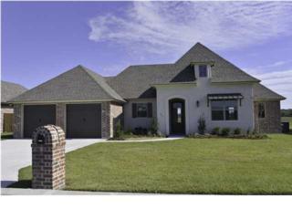 307  Sugar Creek Ln  , New Iberia, LA 70563 (MLS #L14258607) :: Keaty Real Estate