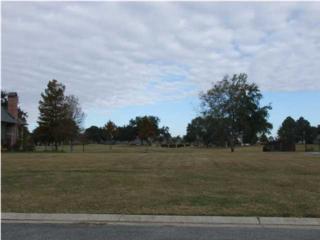 300  Shinnecock Hills Dr  , Broussard, LA 70518 (MLS #L14258617) :: Keaty Real Estate