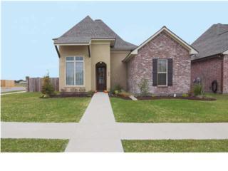 226  Bayou Parc Dr  , Youngsville, LA 70592 (MLS #L14258847) :: Keaty Real Estate