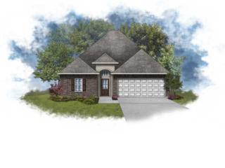 244  Rosemary Pl  , Lafayette, LA 70508 (MLS #L14259100) :: Keaty Real Estate