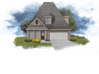 239  Rosemary Pl  , Lafayette, LA 70508 (MLS #L14259102) :: Keaty Real Estate