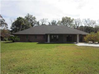 321  Beverly  , Lafayette, LA 70503 (MLS #L14259165) :: Keaty Real Estate