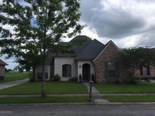 408  Springfield Street  , New Iberia, LA 70563 (MLS #15300753) :: Keaty Real Estate