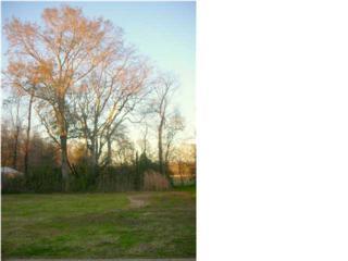 302 N Montauban Dr  , Lafayette, LA 70507 (MLS #L13241234) :: Keaty Real Estate