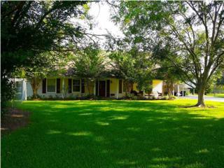 101  Eagle Dr  , Lafayette, LA 70583 (MLS #L14256307) :: Keaty Real Estate