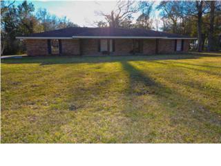 2408  Blue Haven Dr  , New Iberia, LA 70563 (MLS #L15260150) :: Keaty Real Estate