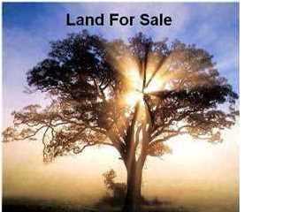 335  Chimney Rock Blvd  , Lafayette, LA 70508 (MLS #L15261078) :: Keaty Real Estate