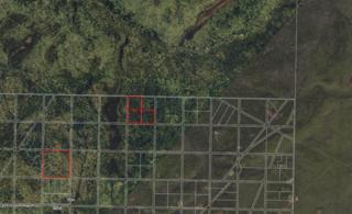 000  Caribou Hills  , Ninilchik, AK 99639 (MLS #14-10523) :: Rasmussen Properties