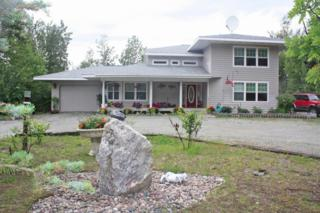 7540 E Reisner Loop  , Wasilla, AK 99654 (MLS #14-12053) :: Foundations Real Estate Experts