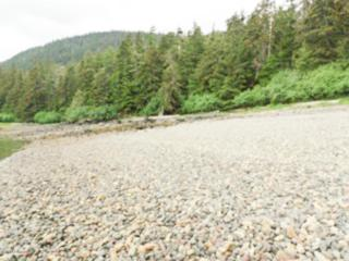 Remote  Freshwater Bay  , Remote, AK 99829 (MLS #14-12104) :: Foundations Real Estate Experts