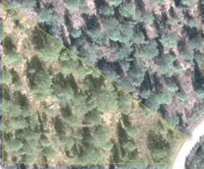 23580 S Adventure Way  , Trapper Creek, AK 99683 (MLS #14-13369) :: Rasmussen Properties