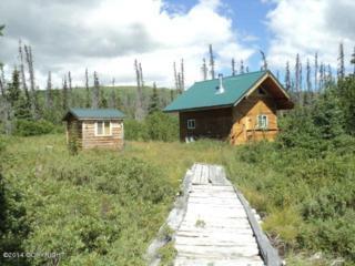 L16 B3  Caribou Homestead Loop  , Homer, AK 99603 (MLS #14-13604) :: Rasmussen Properties