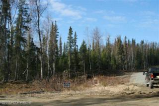 L6 B2  Myla Drive  , Soldotna, AK 99669 (MLS #14-14247) :: Rasmussen Properties