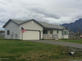 13731 E Jersey Loop  , Palmer, AK 99645 (MLS #14-14265) :: Foundations Real Estate Experts