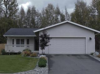 4079  Scenic View Drive  , Anchorage, AK 99504 (MLS #14-14268) :: Foundations Real Estate Experts