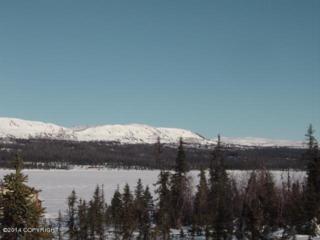 ASLS 71-37  Caribou Lake  , Homer, AK 99603 (MLS #14-14765) :: Rasmussen Properties