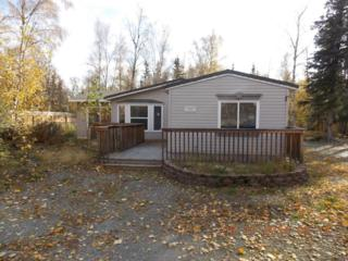 1992 E Loon Drive  , Wasilla, AK 99623 (MLS #14-15167) :: RMG Real Estate Experts