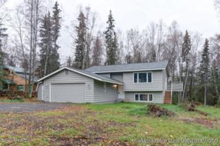 11300  Lipscomb Street  , Anchorage, AK 99516 (MLS #14-15268) :: Foundations Real Estate Experts