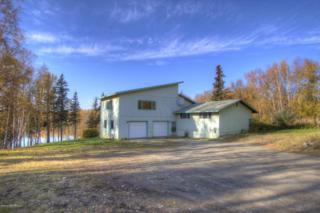 1600 S Mystic Circle  , Palmer, AK 99645 (MLS #14-15345) :: Rasmussen Properties