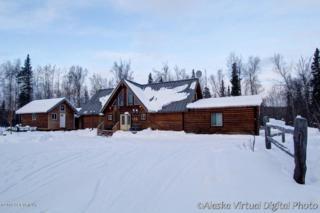 9125 W O'brien Creek Drive  , Wasilla, AK 99654 (MLS #14-15588) :: Rasmussen Properties