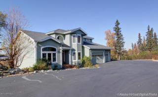 16424  Southcliff Circle  , Anchorage, AK 99516 (MLS #14-15598) :: RMG Real Estate Experts