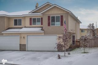 307  Skwentna Drive  #16, Anchorage, AK 99504 (MLS #14-15668) :: Rasmussen Properties