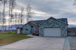 4245 S Pinnacle Peak Drive  , Wasilla, AK 99654 (MLS #14-15674) :: Rasmussen Properties