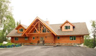 420  Endicott Drive  , Soldotna, AK 99669 (MLS #14-15741) :: Rasmussen Properties