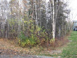 L175A  Richner Road  , Chugiak, AK 99567 (MLS #14-16573) :: RMG Real Estate Experts