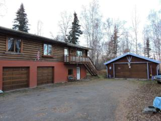 19991  Tulwar Drive  , Chugiak, AK 99567 (MLS #14-16588) :: RMG Real Estate Experts