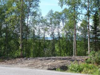 L1 B6  Homestead Road  , Chugiak, AK 99567 (MLS #14-16646) :: RMG Real Estate Experts