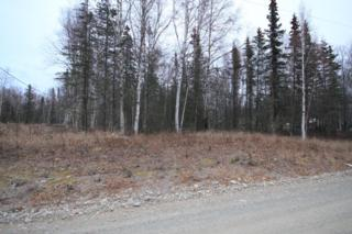 7445 N King Cove Drive  , Wasilla, AK 99654 (MLS #14-16914) :: RMG Real Estate Experts
