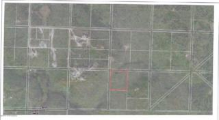 91-55W  Arneson  , Ninilchik, AK 99639 (MLS #14-3907) :: Rasmussen Properties