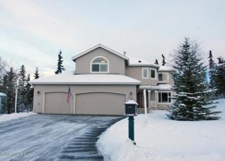 5033  Cape Seville Drive  , Anchorage, AK 99516 (MLS #15-1171) :: RMG Real Estate Experts