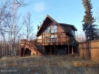 1200 S Lower Road  , Palmer, AK 99645 (MLS #15-2194) :: Foundations Real Estate Experts