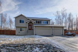 7050 W Werner Drive  , Wasilla, AK 99654 (MLS #15-2462) :: Foundations Real Estate Experts