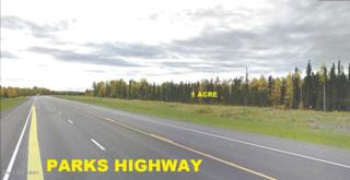 35972 W Parks Highway  , Willow, AK 99688 (MLS #15-2809) :: Foundations Real Estate Experts