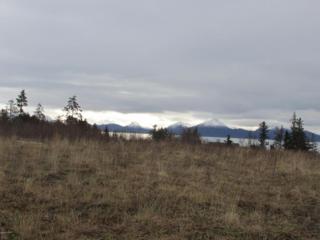 671  Sterling Highway  , Homer, AK 99603 (MLS #15-2813) :: Foundations Real Estate Experts