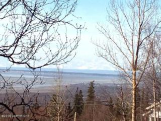 Lot 1  Rabbit Creek Road  , Anchorage, AK 99516 (MLS #15-2849) :: Foundations Real Estate Experts