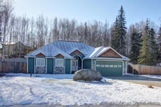 2166 W Church Ridge Drive  , Wasilla, AK 99654 (MLS #15-3343) :: Rasmussen Properties