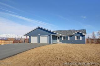 9341 E Coho Circle  , Palmer, AK 99645 (MLS #15-3748) :: Rasmussen Properties
